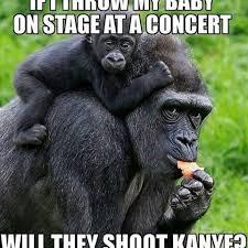 Gorilla Warfare Meme - lovely gorilla warfare meme 80 skiparty wallpaper