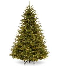 buy led trees from bed bath beyond
