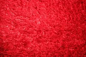 red fur free stock photo public domain pictures