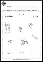 free body parts worksheet for preschool pre k and kindergarten