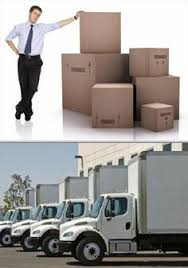in need of professional piano movers who are able to provide