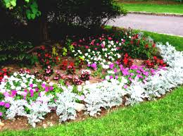 entrancing 60 flower garden ideas for beginners inspiration of 10 flower garden ideas for beginners garden designs for beginners gardening tips landscape design