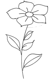 flower sketches and how to draw them simply follow along with