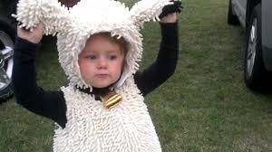 sheep costume girl in sheep costume acting like a cat