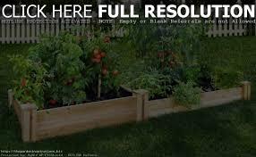 Raised Gardens For Beginners - raised bed gardening for dummies home outdoor decoration