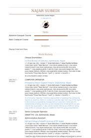 Resume For Computer Operator Job by Enumerator Resume Samples Visualcv Resume Samples Database