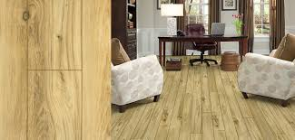 featured floor home smith mountain laurel