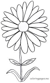 daisy coloring pages daisy flower coloring pages free printable