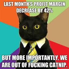 Profit Meme - last month s profit margin cat meme cat planet cat planet