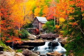 fall foliage peak periods southeast