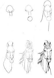 38 best drawing ideas images on pinterest draw drawings and