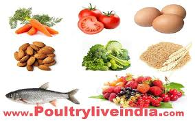 8 best foods to boost your eye health poultry live india