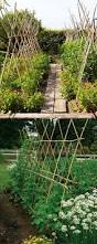 21 easy diy trellis u0026 vertical garden structures garden