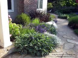 Eco Friendly Garden Ideas Landscape Designer San Anselmo Dig Your Garden Creates Beautiful