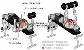 Good Weight For Dumbbell Bench Press Decline Dumbbell Bench Press A Compound Exercise Target Muscle