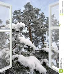 open window to snowy winter forest stock photo image 43029282
