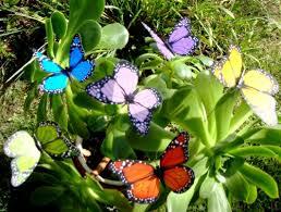 butterfly garden ornaments patio décor butterfly