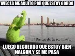 Memes De Nalgones - rana rené on twitter saludos a todos los gordos o los nalgones
