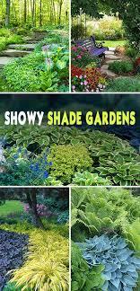 Shade Garden Ideas Showy Shade Gardens Gardens Yards And Garden Ideas