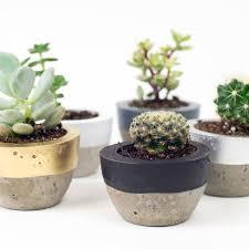 garden pots australia photo album colour block concrete planter by bells and whistles make