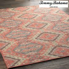 Red Outdoor Rug by Indoor Outdoor Rugs Shades Of Light