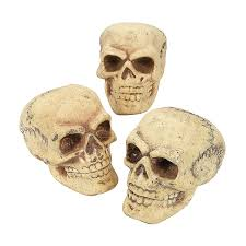 Halloween Decorations Oriental Trading Awesome Vintage Looking Skulls Are Perfect For Setting Up A