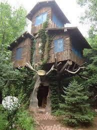 three story tree house pics