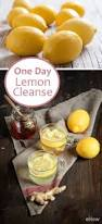 how to safely do a one day lemon cleansing diet cleansing diet