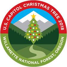 christmas tree pic u s capitol christmas tree