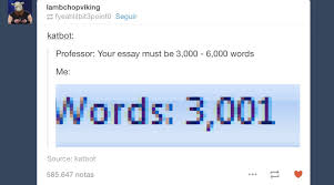 Memes About Writing Papers - writing an essay can t argue with that technically not wrong
