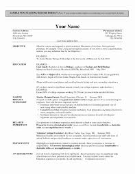 preschool resume template teaching resume template lovely excellent preschool and elementary