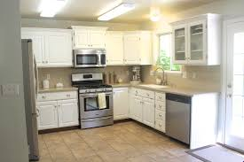 Low Priced Kitchen Cabinets Cool Kitchen Remodeling Ideas On A Small Budget With New Painting