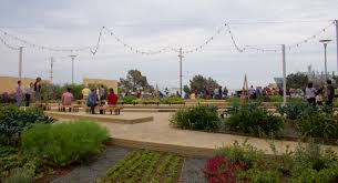 Urban Gardener Newport Beach The Rise U0026 Roi Of Agrihood Residential Farming Communities