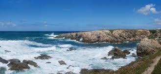 marine habitats wikipedia