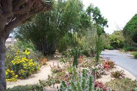 Quail Botanical Gardens Free Tuesday San Diego Botanic Garden Letsgoseeit