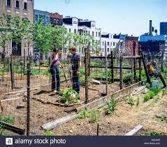Community Gardens In Urban Areas May 1982 New York People Gardening In Community Gardens