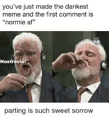 First Meme - you ve just made the dankest meme and the first comment is normie af