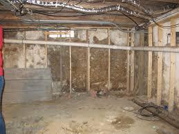 lofty design dirt floor basement solutions basements ideas