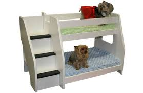 Doggie Bunk Beds Bunk Beds Furniture Bunk Beds Design Home Gallery