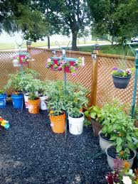 container garden maintenance tips help your plants thrive all summer