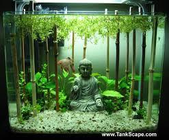 best fan for aquarium 12 best aquarium images on pinterest fish tanks aquarium ideas