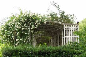 stylish arbor trellis u2013 outdoor decorations