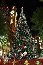 christmas eve christmas tree natale and navidad