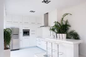 Indoor Kitchen 10 Rooms With Elegant Indoor Plants