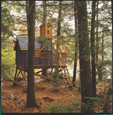 Simple Backyard Tree Houses by 34 Best Tree House Images On Pinterest Treehouses Architecture