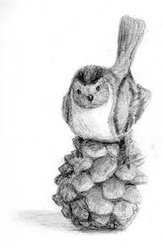 my second pencil drawing bird by borusk on deviantart