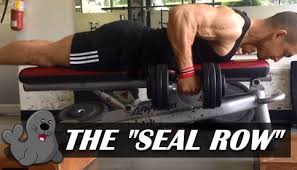 Incline Bench Dumbbell Rows The