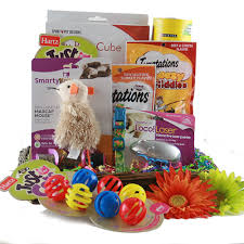 Pet Gift Baskets Gifts For Cats Ideas Choosing Gifts For Cats Is Fun Cat Gift