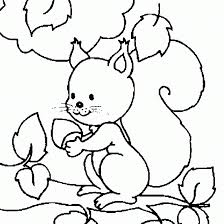 squirrel coloring pages for children animal coloring pages of