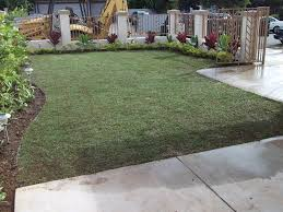 Home Landscaping Ideas by Outdoor U0026 Landscaping Wonderful Dwarf Mondo Grass For Home